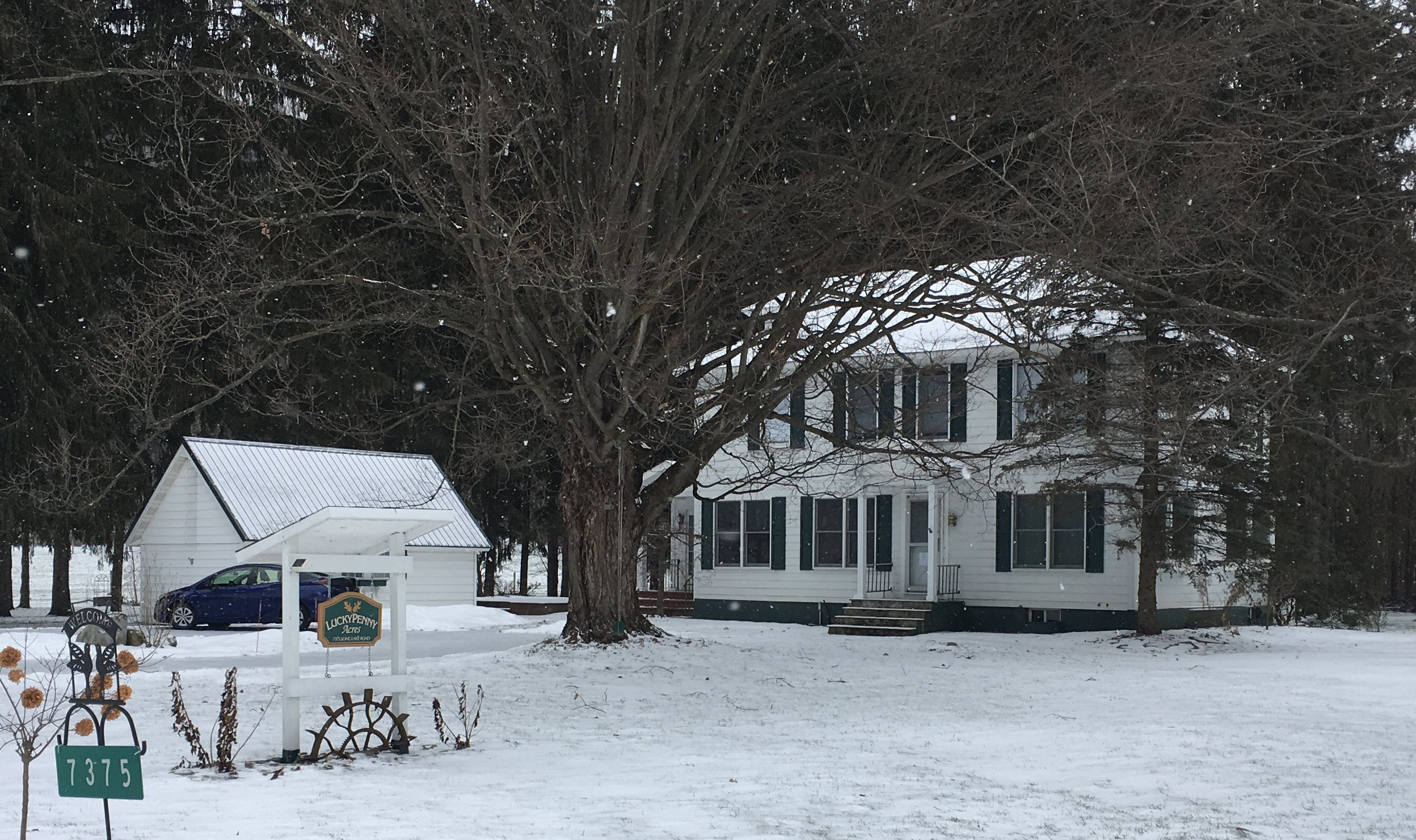Rural geothermal home in Tully NY