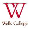 11Wells College